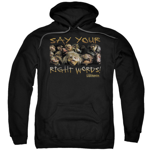 Image for Labyrinth Hoodie - Say Your Right Words