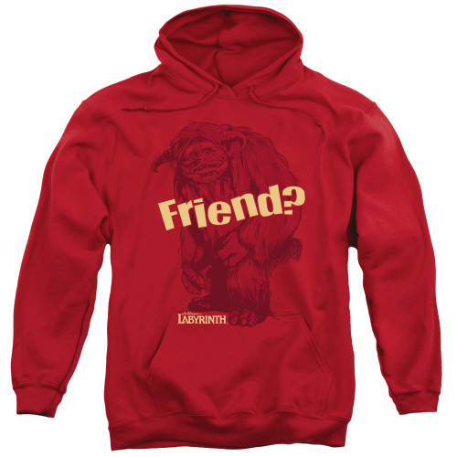 Image for Labyrinth Hoodie - Ludo Friend