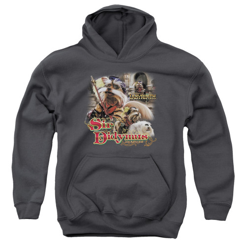 Image for Labyrinth Youth Hoodie - Sir Didymus