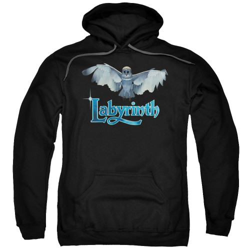 Image for Labyrinth Hoodie - Title Sequence