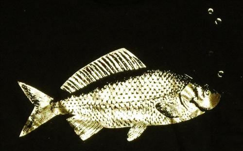 Image for Goldfish T-Shirt