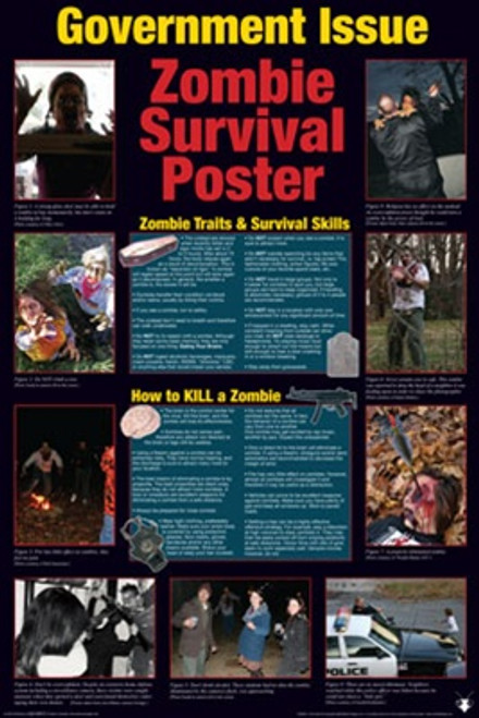 Image for Zombie Poster - Survival Guide