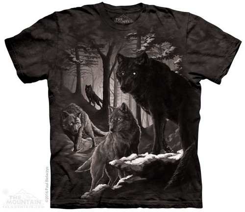 Image for The Mountain T-Shirt - Dire Winter