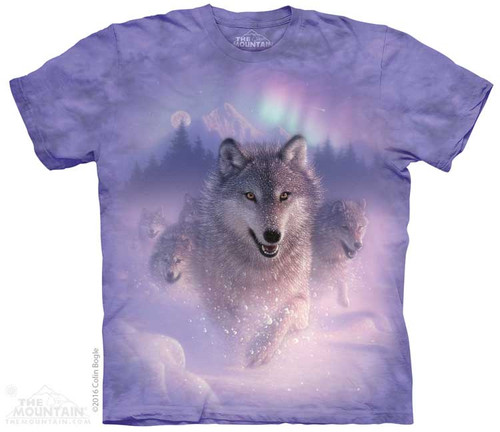 Image for The Mountain Youth T-Shirt - Northern Lights