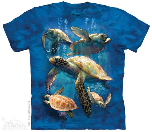 Image for The Mountain Youth T-Shirt - Sea Turtle Family
