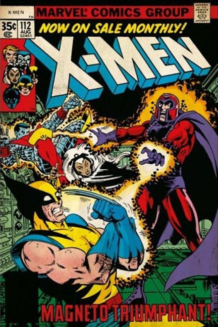 Image for X-Men vs Magneto Poster