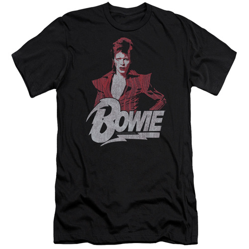 Image for David Bowie Premium Canvas Premium Shirt - Diamond Dave