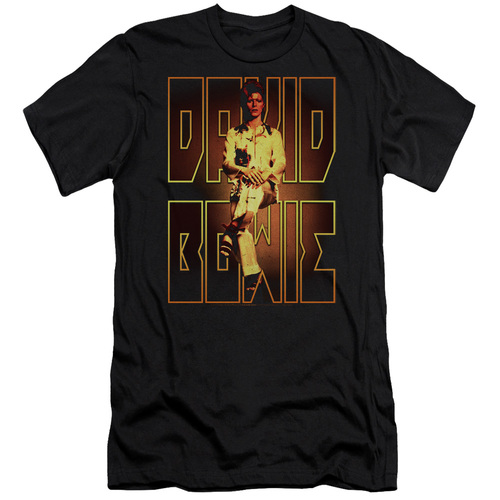 Image for David Bowie Premium Canvas Premium Shirt - Perched