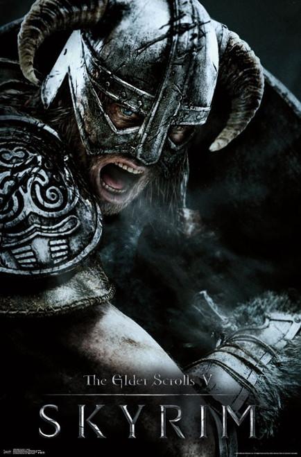Image for Elder Scrolls V Poster - Aerial