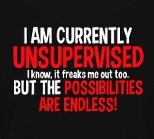 Image for I am Currently Unsupervised T-Shirt