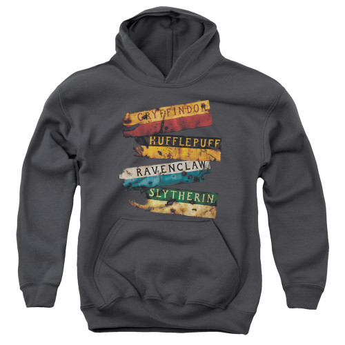 Image for Harry Potter Youth Hoodie - Burnt Banners