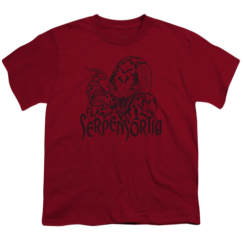Image for Harry Potter Youth T-Shirt - Serpensortia