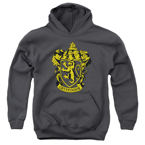 Image for Harry Potter Youth Hoodie - Gryffindor Logo