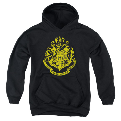Image for Harry Potter Youth Hoodie - Classic Hogwarts Crest