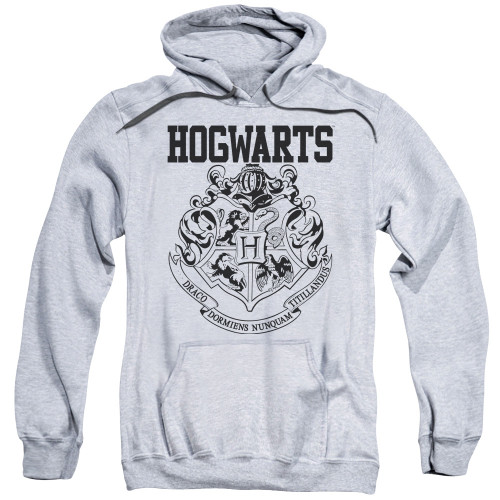 image for Harry Potter Youth Hoodie - Hogwarts