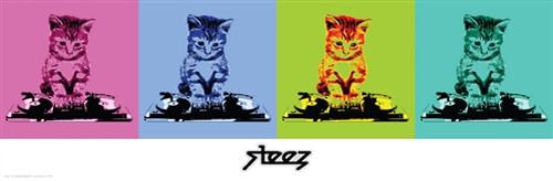 Image for Steez Poster - DJ Kitty