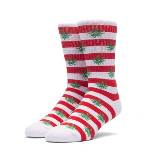 Image for PlantLife Candy Cane Socks