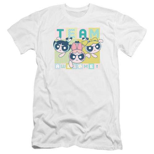 Image for The Powerpuff Girls Premium Canvas Premium Shirt - Awesome Block