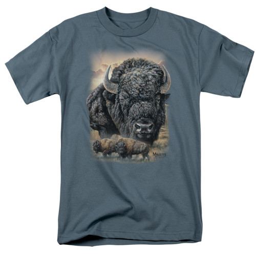 Image for Wild Wings Collection T-Shirt - Sunset Buffalo