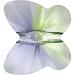 Provence Lavender-Chrysolite Blend
