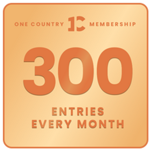 300 monthly entries into every giveaway. Unlimited 5% discount in the shop.