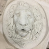 Lion Mask with border