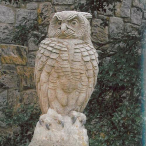 Great Sentinel Owl