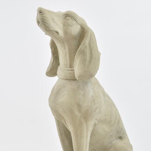 Seated Hound Dog