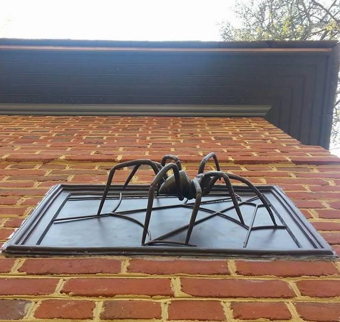 richmond-spider.jpg