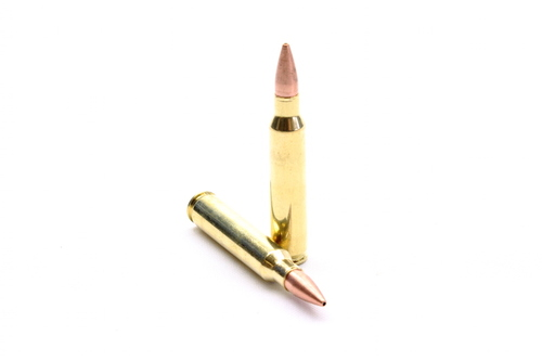SAA 223 caliber 55 grain ammunition surplusammo.com