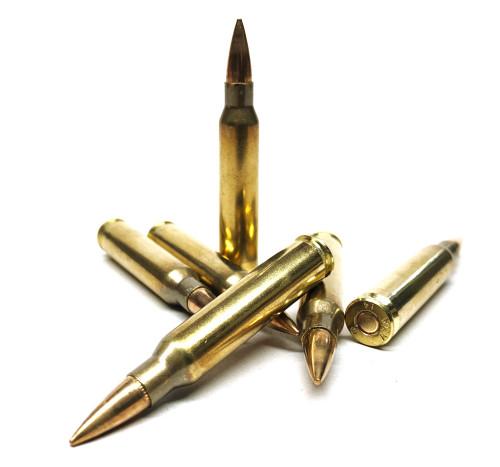 5.56 NATO 62 Gr FMJ M855 AMA DENEX - 80 Rounds DenexM855-80