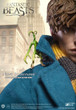Fantastic Beasts and Where to Find Them Newt Scamander 1:6 Scale Figure
