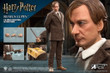 star ace remus lupin