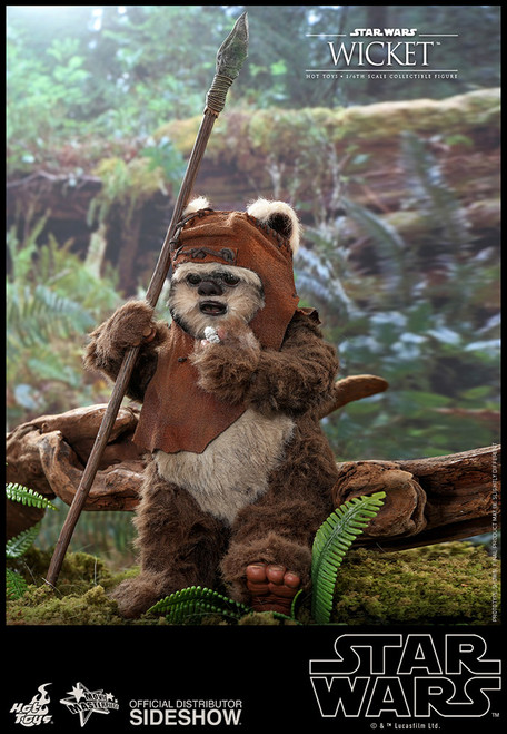Star Wars Wicket 1:6 Scale Figure