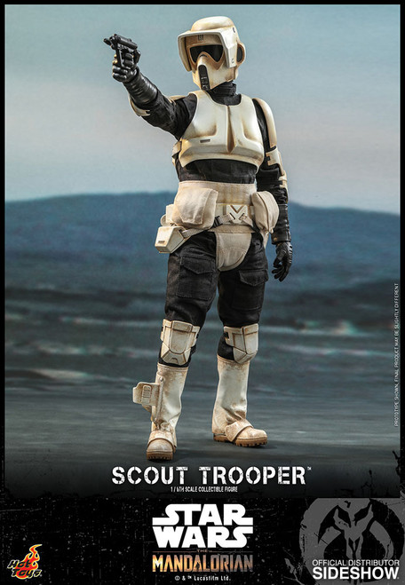 hot toys scout trooper 1/6 scale figure