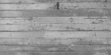 "Designer Panels for Ceiling - Drop In - 24""x48"" - #1004"