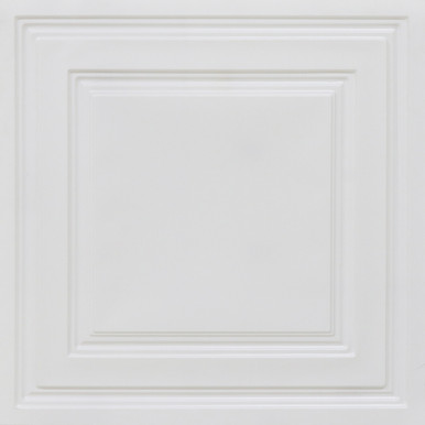 Economy 2 ft. x 2 ft. PVC Lay-in Ceiling Tile Pack (40 sq. ft. / box)