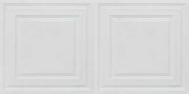 Economy 2 ft. x 4 ft. PVC Lay-in Ceiling Tile Pack  (80 sq. ft. / box)