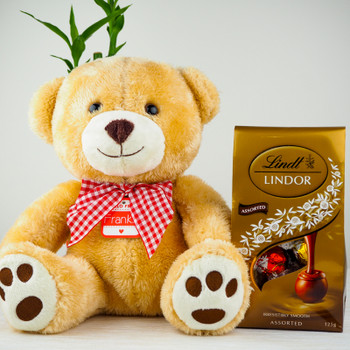Soft Teddy bear with Lindtt Chocolates - FOR AUSTRALIA