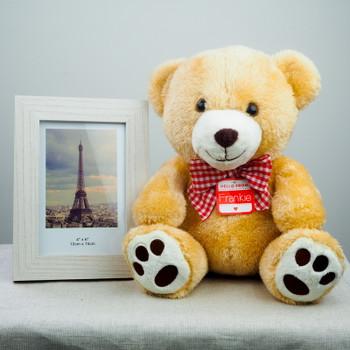 Soft Teddy with Photo Frame - FOR AUSTRALIA