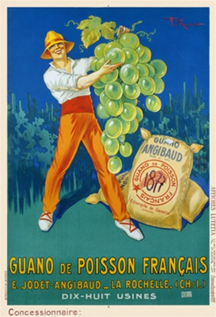 Guano de Poisson Francais by H. LeMonnier 1925 France - Vintage Poster Reproductions. This vertical French product poster features a farmer holding up a giant bunch of grapes with bags of fertilizer next to him. Giclee Advertising Print. Classic Posters