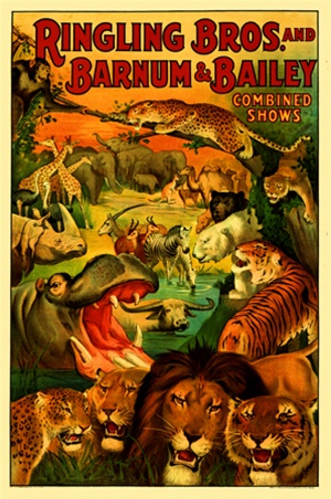 Ringling Bros and Barnum and Bailey 1920 America USA - Vintage Poster Reproductions. This vertical American exhibition poster features all the animals in the circus shows including lions, tigers, hippos and more. Giclee Advertising Print. Classic Posters