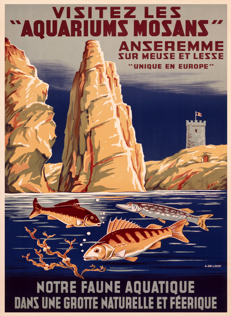 Aquariums Mosans Vintage Poster Reproduction. Belgian travel advertisement features swimming fishes and mountains in a background. Giclee Advertising Prints. Fine Art Posters.