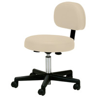 Pneumatic Stool w/ Back Support