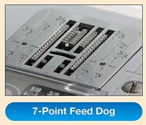 7pointdogs.jpg