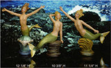 Coming to our website soon! New Mermaids!