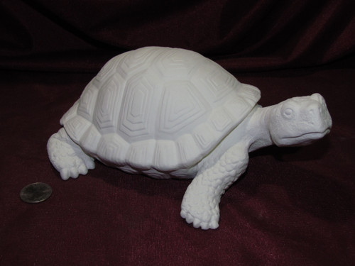 Ceramic Bisque Realistic Turtle pyop unpainted ready to paint diy