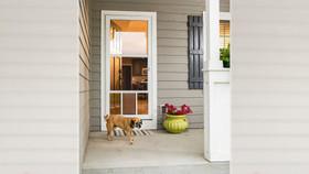 Premier Pet Door