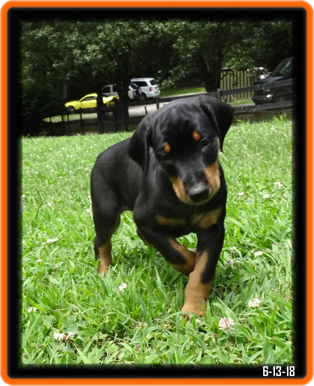 Bellona was Eclipes - in SP1 training ... Stafford VA / Reserved