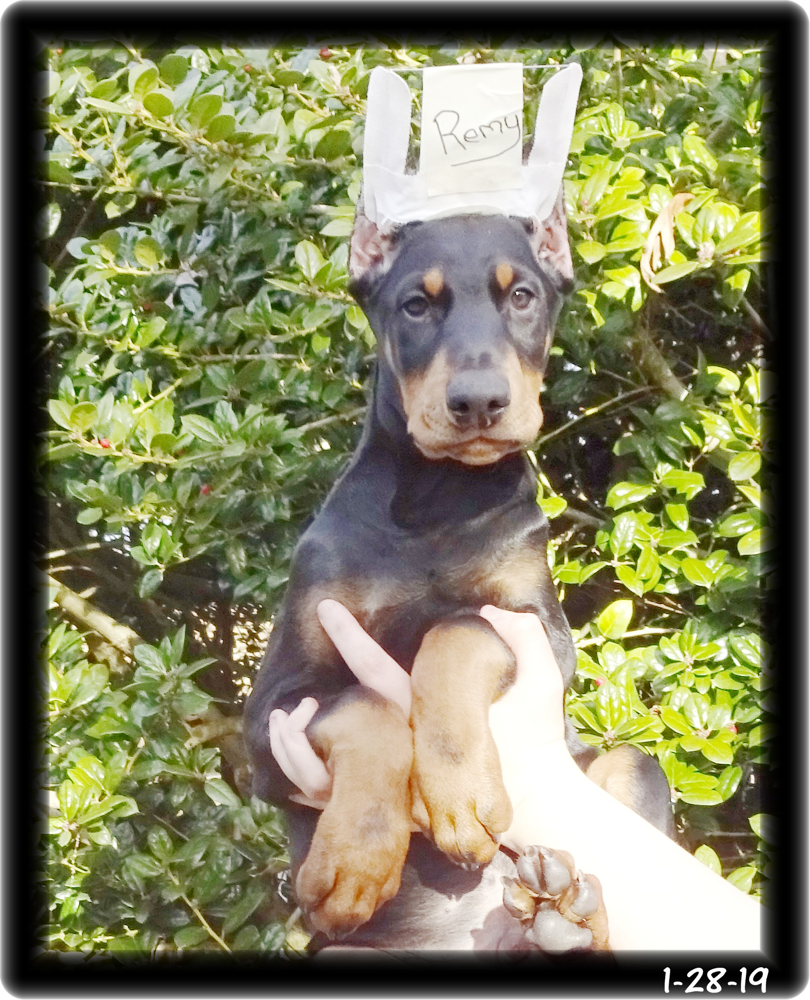 Remington ...  born 11-17-18 - With his family in  Lancaster SC ...click photo to go into his site, learn about this boy & see his video